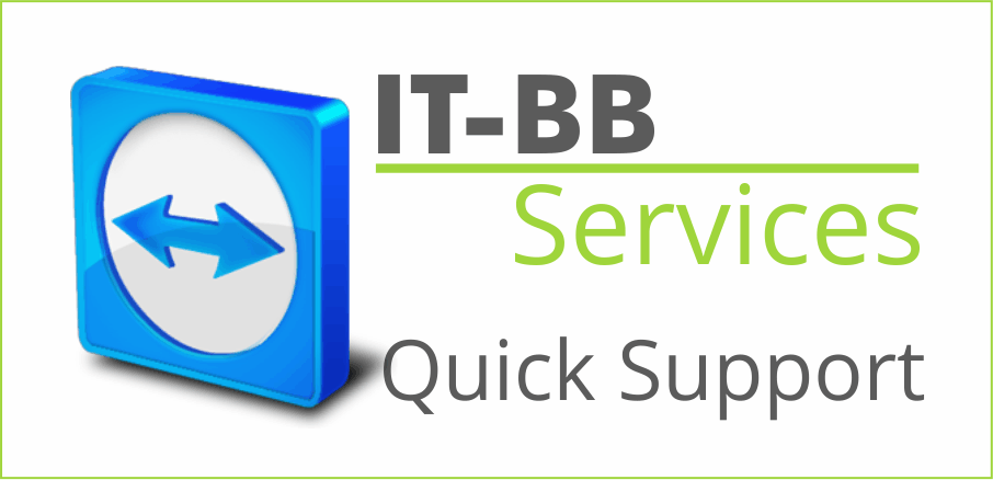 Quick Support Download